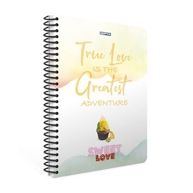 Gıpta  Sweet Love A4 Çizgili 100 Yaprak Defter  Renkli